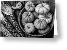 Mimi Pumpkins In Wicker Bowl Black And White Greeting Card