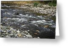mission Creek Greenway, Greeting Card