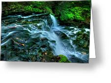 Misty Falls - 2976 Greeting Card