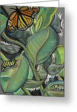 Monarch Series I Greeting Card