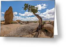 Monolith And Juniper Greeting Card