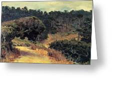 Monterey Forest 1919 Greeting Card