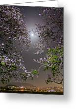 Moonlight And Magic Greeting Card