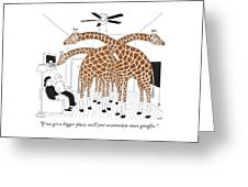More Giraffes Greeting Card