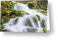 Mossy Falls Greeting Card by Nicole Young