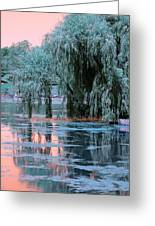 Mother Willow Infrared Greeting Card