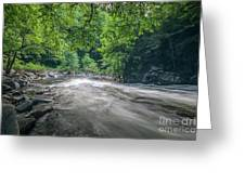 Mountain Stream In Summer #1 Greeting Card by Tom Claud