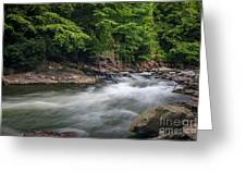 Mountain Stream In Summer #3 Greeting Card by Tom Claud