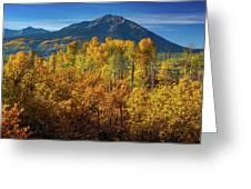 Mountains And Aspen Greeting Card by John De Bord