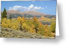 Mt. Elbert Autumn Greeting Card