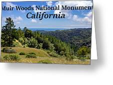 Muir Woods National Monument California Greeting Card
