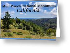 Muir Woods National Monument California Greeting Card
