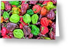 Multi Mini Hot Pepper Variety Greeting Card