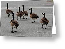 My Walking Buddies Greeting Card