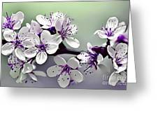 Naturalness And Flowers 33 Greeting Card