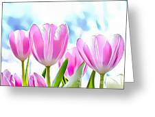 Naturalness And Flowers 40 Greeting Card