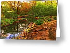 Nature's Heart Healer Greeting Card