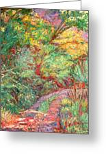 New River Trail Greeting Card