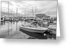 Newport Rhode Island Harbor Greeting Card