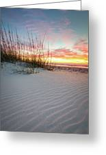 North Beach Dunes Greeting Card