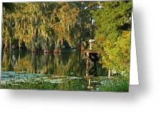North Dock Peace Greeting Card