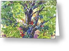 Oak And Poison Ivy Greeting Card by Judith Kunzle