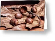 Oak Tree Macro Greeting Card