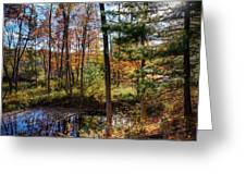 October Late Afternoon Greeting Card by Kendall McKernon