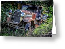 Old Model Aa Ford In The Jungle 2 Greeting Card
