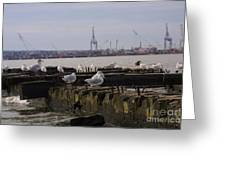 Old New Jersey Pier Statue State Park II Greeting Card