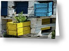Old Pallet Painted White, Blue And Yellow Used As Flower Pot Greeting Card
