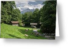 one afternoon in Ballenberg Greeting Card
