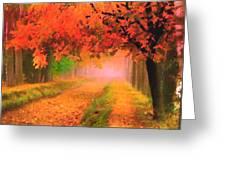 Orange Fall Greeting Card