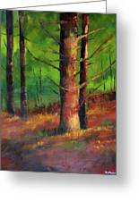 Oregon Pine Forest Greeting Card