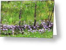 Overcome With Beauty Greeting Card by Rick Furmanek