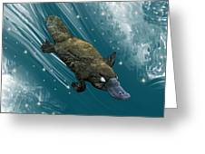 P Is For Platypus Greeting Card