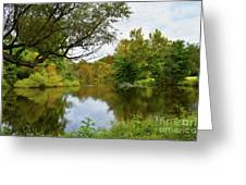 Painted Fall On The Back Pond Greeting Card