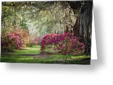 Paintely Garden Greeting Card