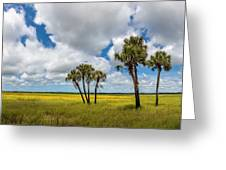 Palm Trees In The Field Of Coreopsis Greeting Card