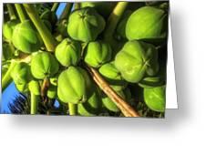 Papaya Greeting Card