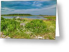 Paradise In Maine Greeting Card