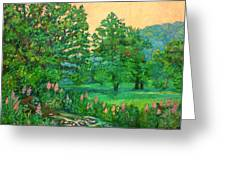 Park Road In Radford Greeting Card