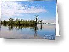 Pasquotank River North Carolina Greeting Card