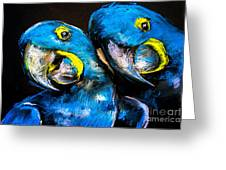 Pastel Painting Of A Blue Parrots On A Greeting Card