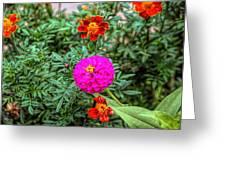 Pastel Wild Flowers Greeting Card