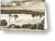 Pastoral Plains Greeting Card