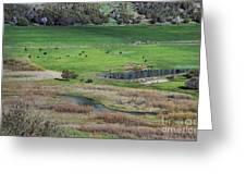Peaceful Farm In Durango Greeting Card