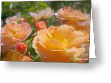 Peach Yellow Roses Greeting Card