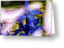 Peek A Blue Greeting Card