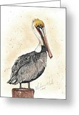 Pelican No 1 Greeting Card